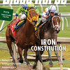 April 5, 2014 Issue 14 cover of The Blood-Horse.  Iron Constitution: WinStar, Twin Creek's undefeated star takes the Florida Derby Dubai World Cup: Evening of global racing at Meydan ends with African Story Q&A with Madeline Auerback: Breeder/owner is newest commissioner for the California Horse Racing Board Saratoga Struggles over Casino Expansion: Town is split on potential 'destination casino' Getting the Picture: Racing is behind the curve in converting to High Definition Midwest/Canada: Kela and Stillwater Equine Clinic  Buy this issue: http://shop.bloodhorse.com/collections/the-blood-horse-single-issue-pdf/products/the-blood-horse-april-5-2014-pdf