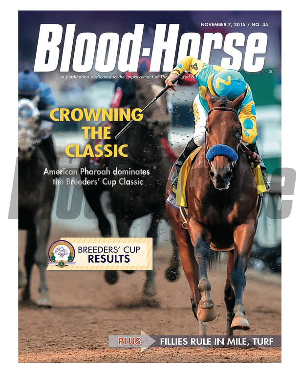 November 7, 2015 Issue 45 cover of the Blood-Horse featuring American Pharoah winning the Breeders' Cup Classic at Keeneland