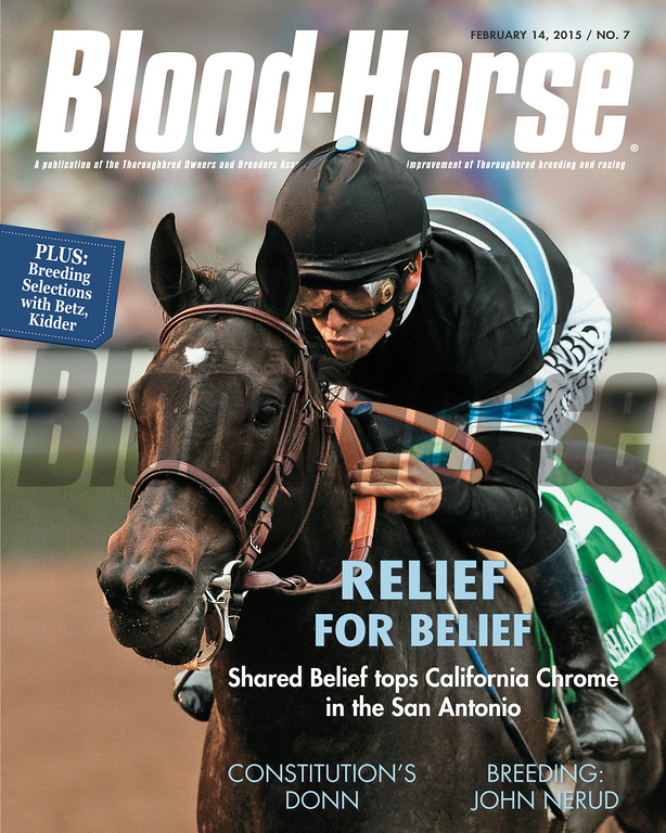 February 14, 2015 Issue 7 cover of the Blood-Horse featuring Shared Belief and Mike Smith winning the San Antonio at Santa Anita Park