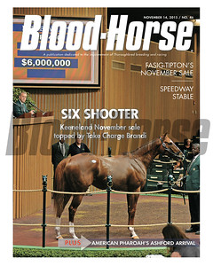 November 14, 2015 Issue 46 cover of the Blood-Horse featuring Take Charge Brandi at the Keeneland November Sale