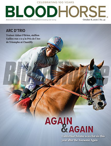 October 8, 2016 issue 41 cover of BloodHorse featuring California Chrome is six-for-six this year after the Awesome Again.