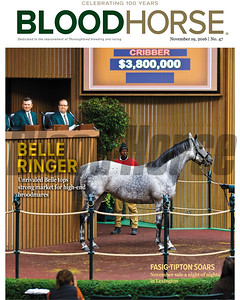 November 19, 2016 issue 47 cover of BloodHorse featuring Belle Ringer as Unrivaled Belle tops strong market for high-end broodmares, Fasig-Tipton-Soars as November sale a night of nights in Lexington.