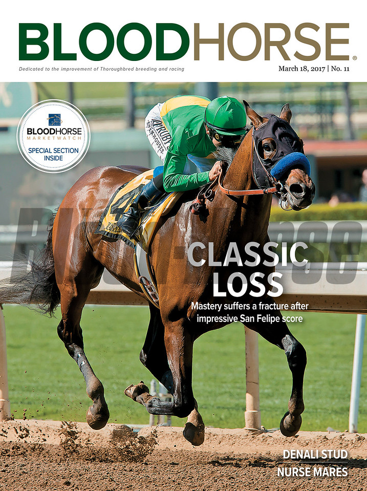 March 14, 2017 issue 11 cover of BloodHorse featuring Classic Loss as Mastery suffers a fracture after impressive San Felipe score, Denali Stud, Nurse mares.