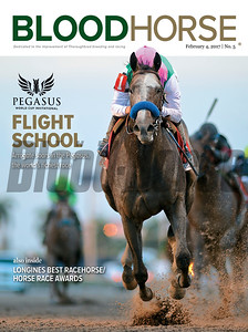 Febuary 4, 2017 issue 5 cover of BloodHorse featuring Pegasus World Cup Invitational coverage, Flight School as Arrogate soars in the Pegasus - the world's richest race, also inside Longines Best Racehorse/HorseRace Awards.