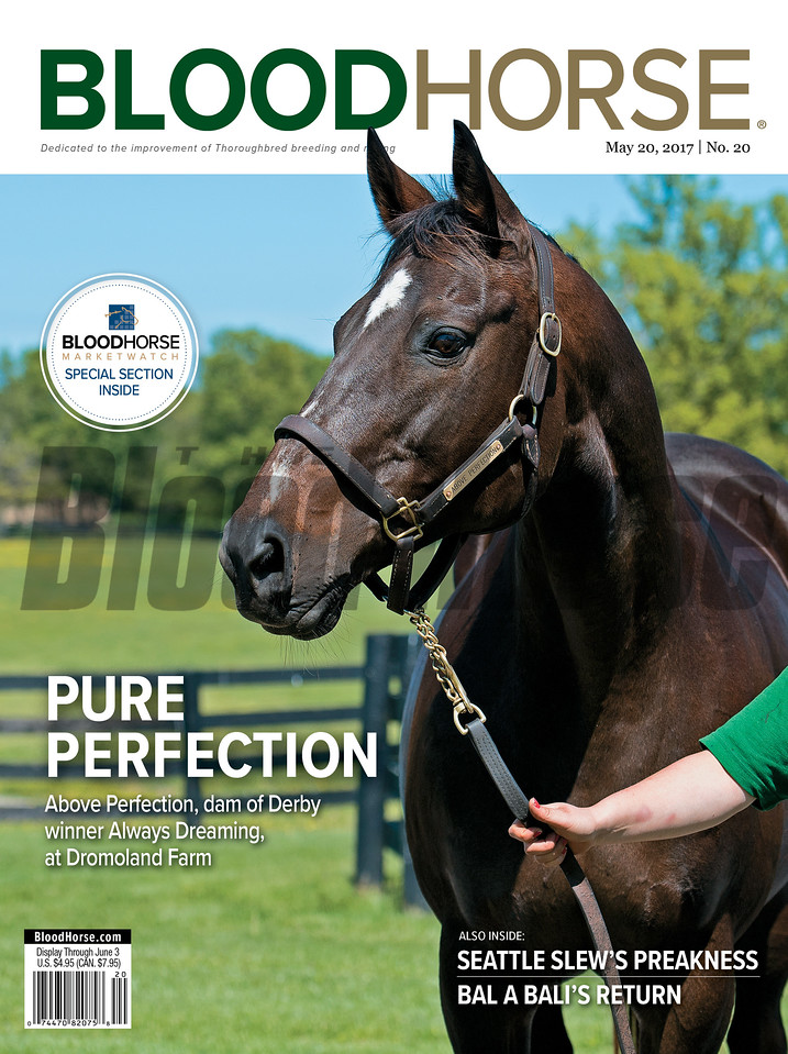 May 20, 2017 issue 20 cover of BloodHorse featuring Pure Perfection as Above Perfection, dam of Derby winner Always Dreaming, at Dromoland Farm, Seattle Slew's Preakness, Bal a Bali's Return.