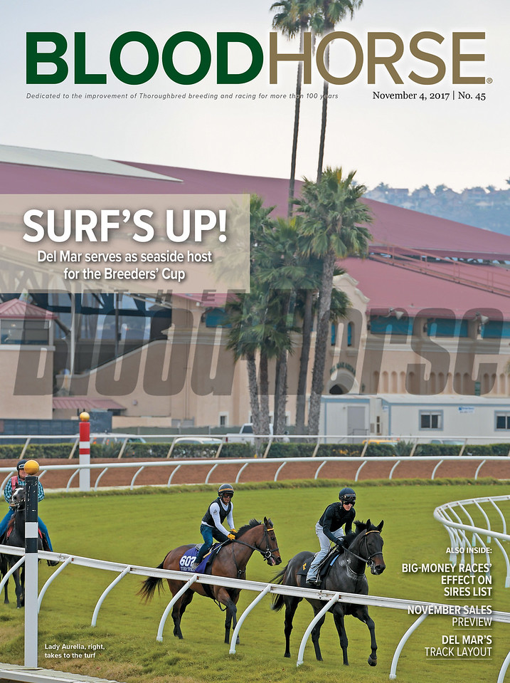 November 4, 2017 issue 45 cover of BloodHorse featuring Surf's Up! as Del Mar serves as seaside host for the Breeders' Cup, Big-Money Races' Effect on Sires List, November Sales Previes, Del Mar's Track Layout.