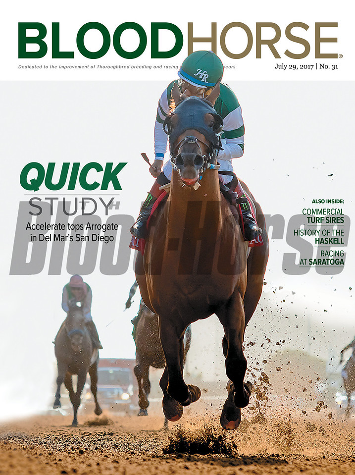 July 29, 2017 issue 31 cover of BloodHorse featuring Quick Study as Accelerate tops Arrogate in Del Mar's San Deigo, Also inside: Commercial Turf Sires, History of the Haskell, Racing at Saratoga.