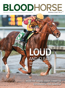 February 11, 2017 issue 6 cover of BloodHorse featuring Loud and Clear as Irish War Cry clearly best in the Holy Bull, inside the Graded Stakes Committee, Experimental Free Handicap.