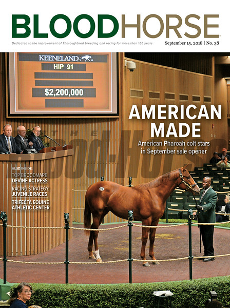 September 15, 2018 issue 38 cover of BloodHorse featuring American Made as American Pharoah colt stars in September sale opener, Top Broodmare Devine Actress, Racing Strategy: Juvenile Races, Trifecta Equine Athletic Center.