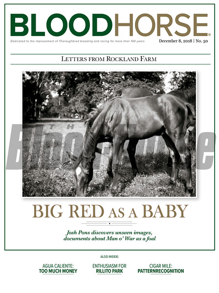 December 8,  2018 issue 50 cover of BloodHorse featuring Letters from Rockland Farm: Big Red as a Baby, Josh Pons discovers unseen images, documents about Man o' War as a foal, Agua Caliente: Too Much Money, Enthusiasm for Rillito Park, Cigar Mile: Patternrecognition.