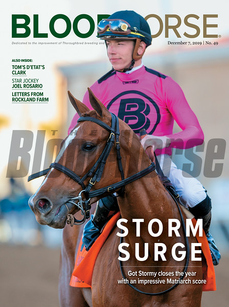 December 7; 2019; issue 49; cover of Blood Horse; Storm Surge: Got Stormy closes the year with an impressive Matriarch score Also Inside: Tom's D'Etat's Clark, Star Jockey Joel Rosario, Letters from Rockland Farm; On the cover: Got Stormy and Tyler Gaffalione win the Matriarch Stakes (G1T) at Del Mar on December 1, 2019.