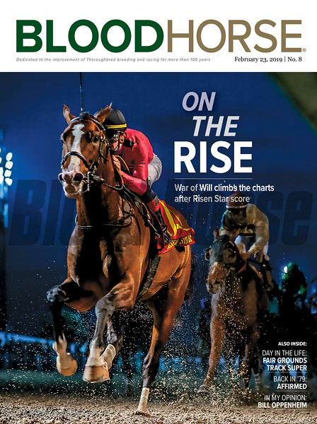 February 23; 2019; issue 8; cover of Blood Horse; On the Rise: War of Will climbs the charts after Risen Star score; Also Inside: Day in the life:Fair Grounds Track Super, Back in '79: Affirmed, In my Opinion: Bill Oppenheim. On the cover: War of Will and Tyler Gaffalione with the Risen Star Stakes at Fair Grounds, February, 16, 2019