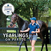 June 29; 2019; issue 26; cover of Blood Horse; Yearlings on Parade: Sale season kicks off; Also Inside: Going Green: Turf's Comback, The Costs Behind Selling Yearlings, In My Opinion: Bill Oppenheim; On the cover: Hip 523, So Hi Society, at Elite Sales, Fasig-Tipton, in Lexington, Kentucky July 6, 2018.