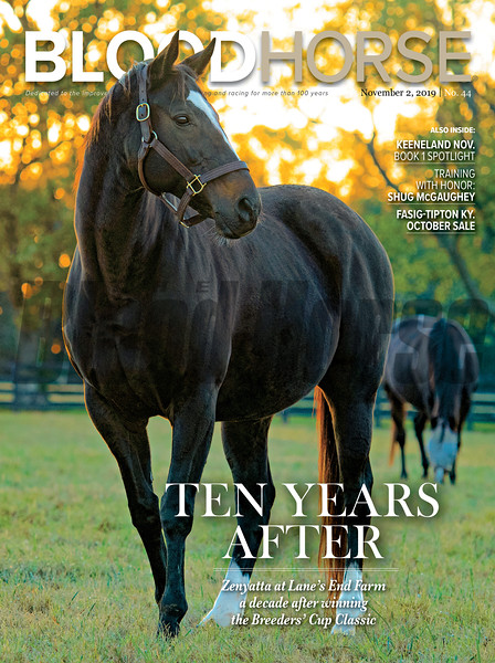 November 2; 2019; issue 44; cover of Blood Horse; Ten Years After: Zenyatta at Lane's End Farm a decade after winning the Breeders' Cup Classic; Also Inside: Keeneland Nov. Book 1 Spotlight, Training withHonor: Shug McGaughey, Fasig-Tipton KY. October Sale; On the cover: Zenyatta at Lane's End Farm on October 21, 2019.