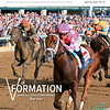 April 13; 2019; issue 15; cover of Blood Horse; V Formation: Vekoma is clear in Keeneland's Blue Grass; Also Inside: Major Scores By Tacitus Roadster, Medaglia d'Oro, Sale Companies: Keeneland; On the cover: Vekoma with Javier Castellano up wins the Toyota Blue Grass Stakes (G2) at Keeneland on April 6, 2019 in Lexington, Ky.