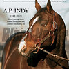 February 29; 2020; issue 9; cover of Blood Horse; A.P. Indy 1989-2020: Record yearling, classic winner, Horse of the Year, and two-time leading sire, Also Inside; Jockeys and Concussions, Lights Out: Turfway Park, Trainer Joseph O'Brien, Agent Brooke Hubbard, On the cover: A.P. Indy at Lane's End Farm near Versailles, Kentucky on December, 20, 2006.