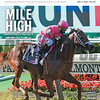 July 11; 2020; issue 28; cover of Blood Horse; Mile High: Vekoma stars in the July 4 Metropolitan Handicap, Also Inside: Daily Life: Humberto Chavez, Anthony Manganaro, Fasig-Tipton Midlantic Sale, On the cover: Vekoma and Javier Castellano win the Runhappy Metropolitan Handicap (G1) at Belmont Park on July 4, 2020