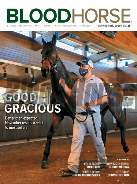 November 28, 2020; issue 48; cover of Blood Horse; Good Gracious: Better-than-expected November results a relief to most sellers, Also inside: Four Score: Brad Cox, Double Down: Team Repole/Viola, New Kid in Town: Robbie Medina, He's Back: George Bolton, On the cover: Kallio is lead through the back walking ring before selling at Keeneland November for Four Star Sales in Lexington, Kentucky on November 9, 2020