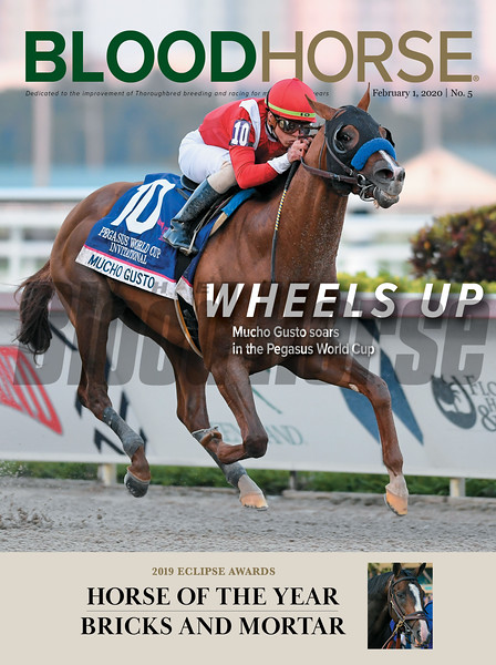 February 1; 2020; issue 5; cover of Blood Horse; Wheels Up: Mucho Gusto soars in the Pegasus World Cup; Also Inside; 2019 Eclipse Awards; Horse of the Year: Bricks and Mortar; On the cover: Mucho Gusto and Irad Ortiz Jr. win the Pegasus World Cup Invitational Stakes presented by Runhappy (G1) at Gulfstream Park on January 25, 2020.