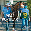 December 12, 2020; issue 50; cover of Blood Horse; Real Popular: Authentic heads list of new stallions for 2021, Also inside: New Regional Sires for 2021, Racing Threat: Global Warming, Entourage Stable's Pink Lloyd, Peter Brant's Payson Park, On the cover: Authentic walks into the paddock of Churchill Downs before winning the Kentucky Derby on September 5, 2020 in Louisville, Kentucky.