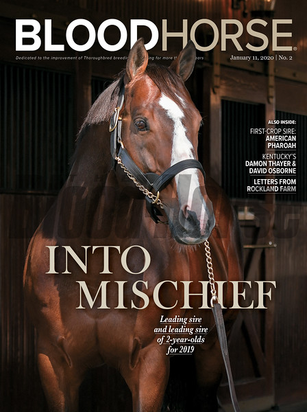 January 11; 2020; issue 2; cover of Blood Horse; Into Mischief: Leading sire and leading sire of 2-year-olds for 2019 Also Inside: First-Crop Sire: American Pharoah, Kentucky's Damon Thayer & David Osborne, Letters From Rockland Farm; On the cover: Into Mischief at Spendthrift Farm in Lexington, Kentucky, November 15, 2019.