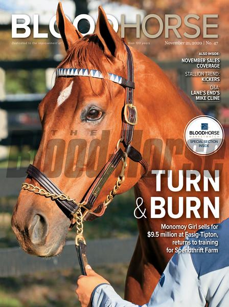 November 21, 2020; issue 47; cover of Blood Horse; Turn & Burn: Monomoy Girl sells for $9.5 million at Fasig-Tipton, returns to raining for Spendthrift Farm, Also Inside: November Sales Coverage, Stallion Trend: Kickers, Q&A: Lane's End Mike Cline, On the cover: Monomoy Girl before selling for $9.5 million at Fasig-Tipton in Lexington, Kentucky on November 8, 2020