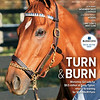 November 21, 2020; issue 47; cover of Blood Horse; Turn & Burn: Monomoy Girl sells for $9.5 million at Fasig-Tipton, returns to raining for Spendthrift Farm, Also Inside: November Sales Coverage, Stallion Trend: Kickers, Q&A: Lane's End Mike Cline, On the cover: Monomoy Girl before selling for $9.5 million at Fasig-Tipton in Lexington, Kentucky on November 8, 2020