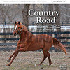 March 14; 2020; issue 11; cover of Blood Horse; Country Road: Country House's long journey from Kentucky Derby Winner to laminitis survivor, Also Inside; FBI Indicts Trainers Servis, Navarro, Super Agent: Steve Rushiung, In My Opinion Bill Oppenheim, On the cover: Country House in his paddock at Blackwood Stables on February, 27, 2020