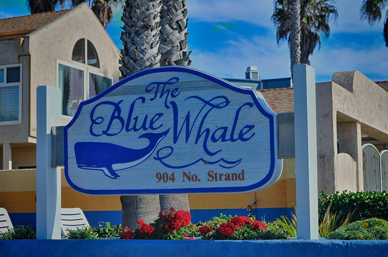 The Blue Whale Timeshare on The Strand,  Ocean Side 2-16-14