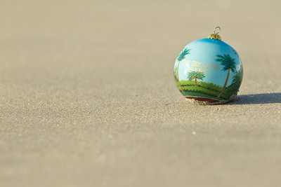 Ornament_014