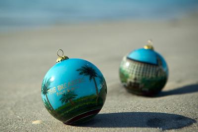 Ornament_028