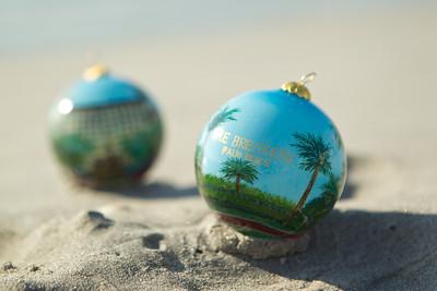 Ornament_033