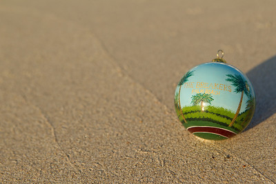 Ornament_005