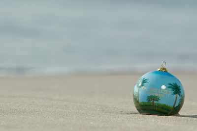 Ornament_021
