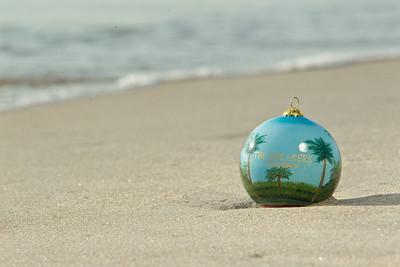 Ornament_022