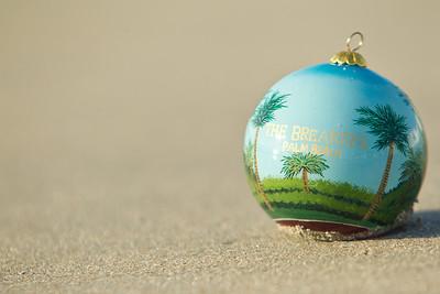 Ornament_002