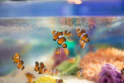 SeafoodBar_040