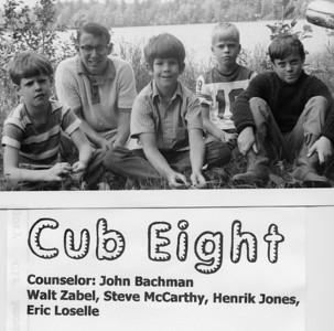 1970 Cub 8