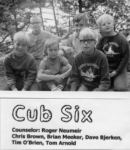 1970 Cub 6
