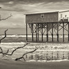 Last cabin standing, Hunting Island State Park (Sepia)