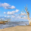 Botany Bay Plantation Boneyard Beach