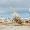 Hunting Island high resolution panorama
