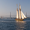 Tallship in Charleston harbor