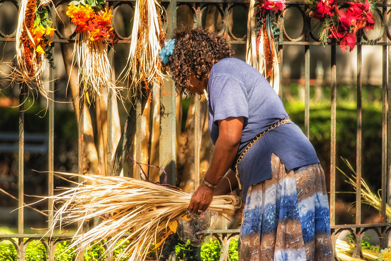 Choosing sweetgrass for weaving baskets