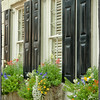 Window Boxes on State Street