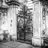 Wrought Iron Gate Black and Whte