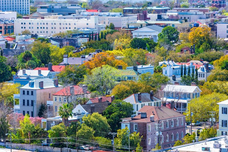 Views of the Historic Ansonborough Neighborhood
