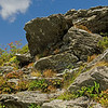 Rocky outcrop on the summit