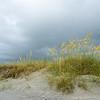 Dunes and Sea Oats, Folly Beach County Park