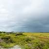 Barrier Island Marsh, Folly Beach SC